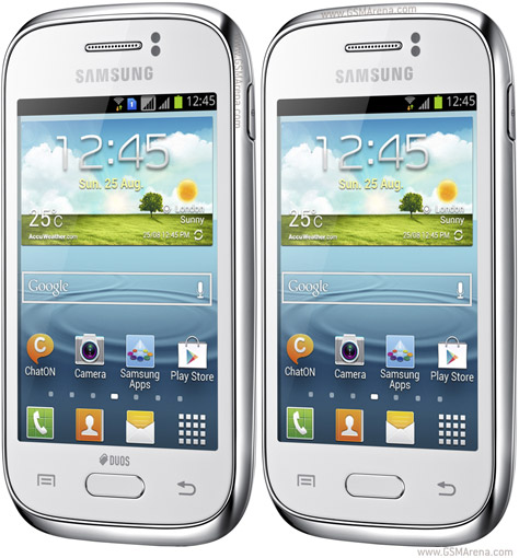 Samsung_Galaxy_Young_S6310_a