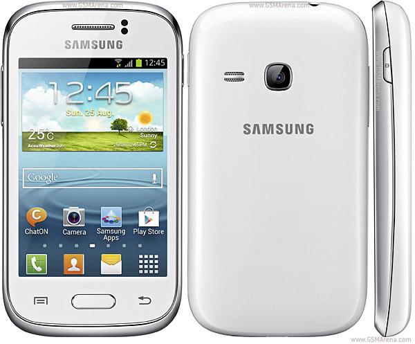 Samsung_Galaxy_Young_S6310_b