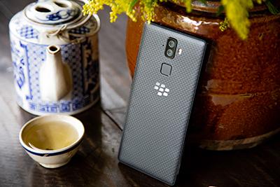 Blackberry Evolve cùng tết Kỷ Hợi 2019