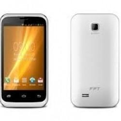 FPT F22