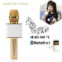 Micro Loa Hát Karaoke YS10