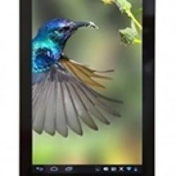 Mua Sản Phẩm Acer Iconia One 7 B1 740 8GB